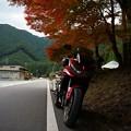 写真: 紅葉を探しに