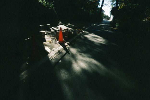 Photos: そこに射す光