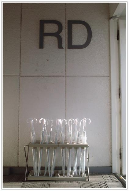RD(1000人展ver.)