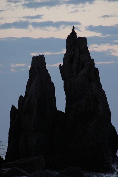写真: 橋杭岩の上に鳥(カラス?)