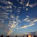 写真: 橋杭岩と日の出2