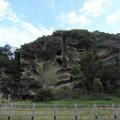 写真: 虫食い岩