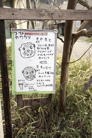 hirakawa130303004