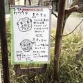 Photos: hirakawa130303004