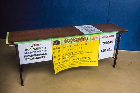 misaki130623b002