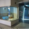 Photos: miyajima130917001