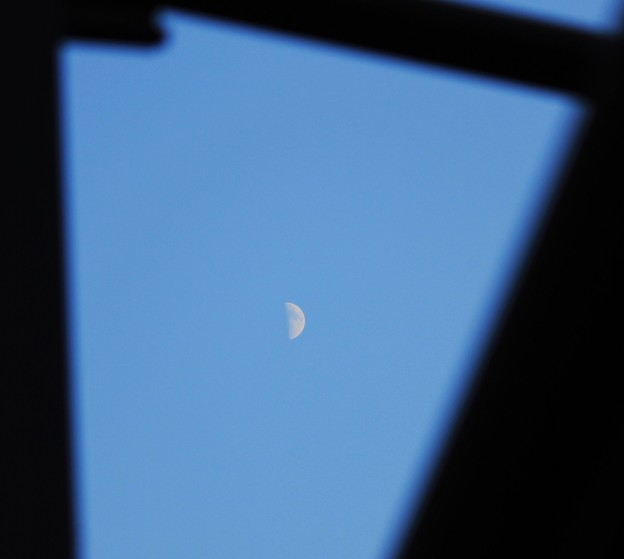 夕景・・青さを残す空に上弦の月 1  08:14