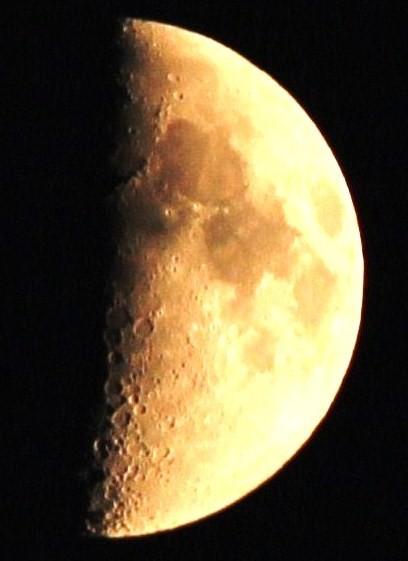 夕景・・暑さが残る夜空に上弦の月  08:14