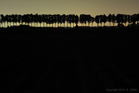 Silhouette-2_April 4, 2013 4
