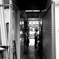 Photos: おのぼりさんが往く! 06
