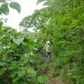 2012.07.29大山216下りの道も苦労します
