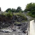 八幡野港から一本松展望台へ