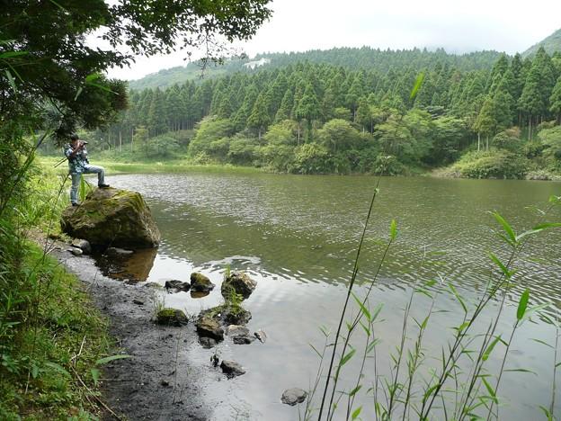 お玉ヶ池の水面