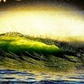 Photos: 緑の波