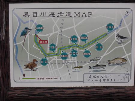 黒目川遊歩道MAP