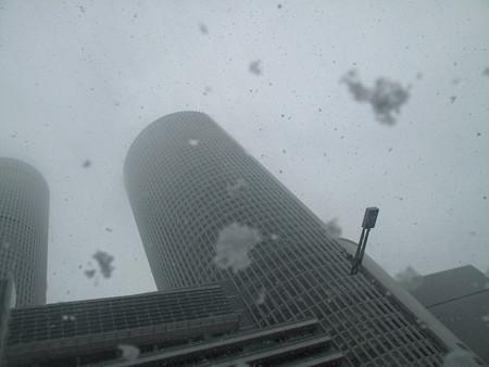 IMG_7549 2014.2.14 雪