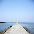 写真: 海へ続く道