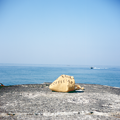 写真: 海とかばん