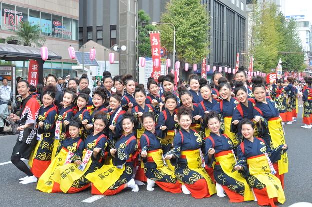 美女軍団(ヤング踊り連)