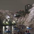 Photos: 夜桜11