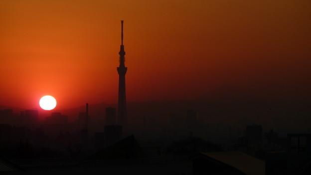 写真: 日没と東京スカイツリー