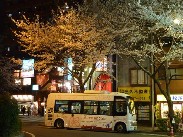 夜桜の下で…