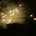Photos: 夏の夜の輝き
