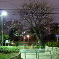 Photos: 夜の染井界隈