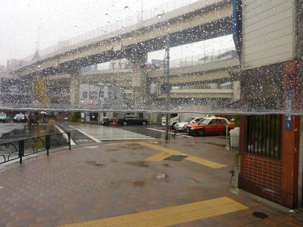 Photos: 雨の中を…