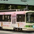 Photos: 都電荒川線8504号車?