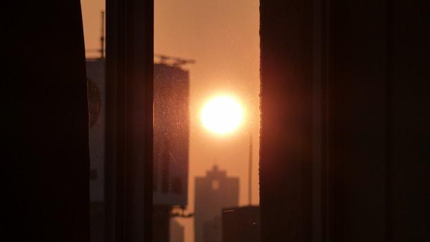 太陽にほえろ!?(1)