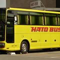 Photos: はとバス
