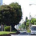 西ヶ原一里塚(2)