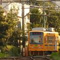 写真: 都電荒川線7022号車(2013.9.21)