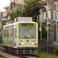 Photos: 都電荒川線7031号車?