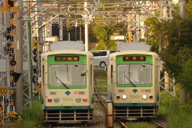 写真: 都電荒川線7031号車?