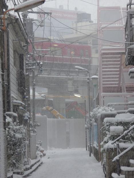 写真: 雪降る路地
