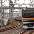 Photos: E231系近郊形