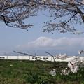 今日の富士山(2013/3/23)