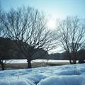 写真: 201212-03-015ゴミ取りPZ