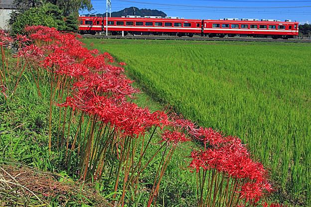 5954列車