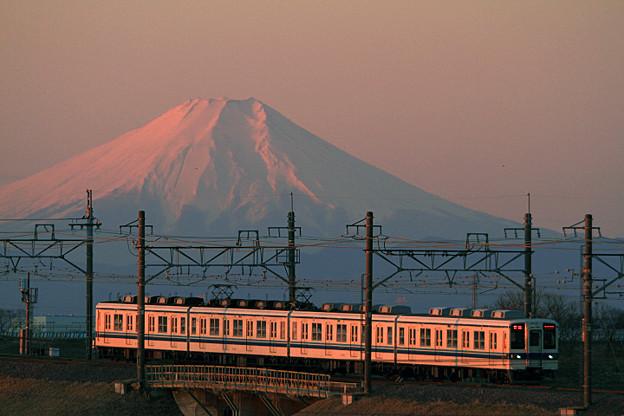 紅富士205列車