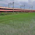 吉水~堀米 カーブ 1612列車