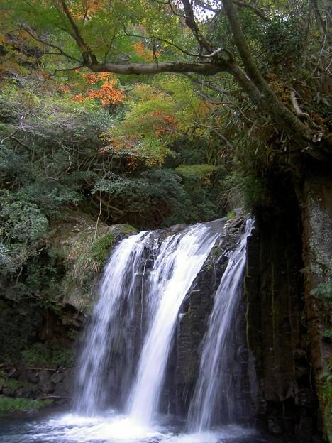 初景滝(静岡県河津町)