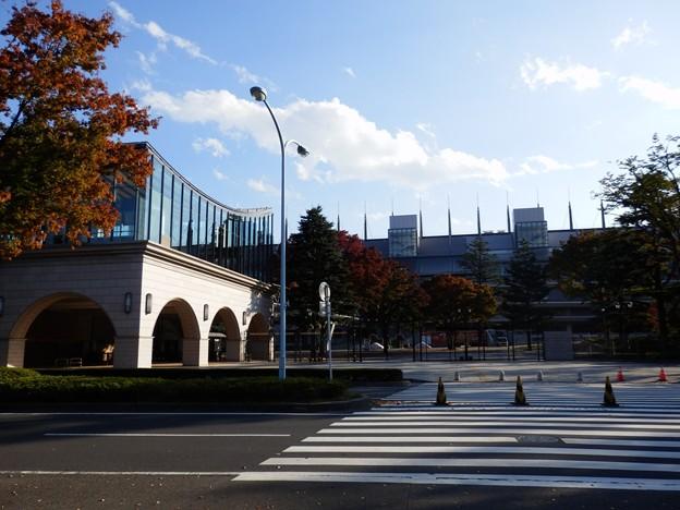 東京競馬場(東京都府中市)