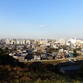 Photos: 桜ヶ丘団地からの眺め(東京都多摩市)