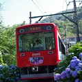 Photos: 箱根登山鉄道2000系