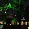 Photos: Smart illumination 横浜2013