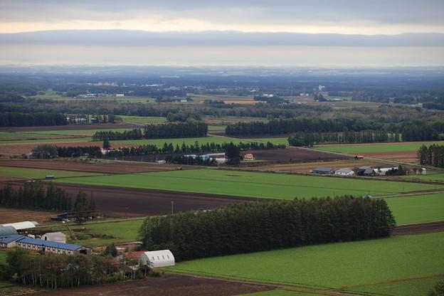 写真: 一本山展望台からの風景