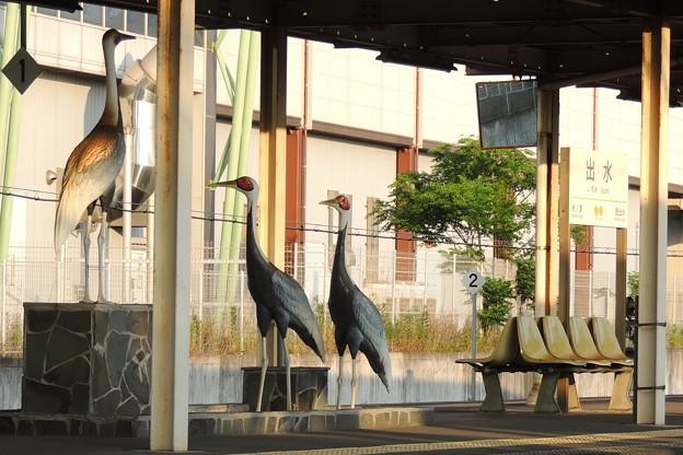 鶴が渡来する駅